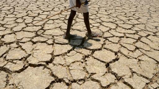Famine in Madagascar